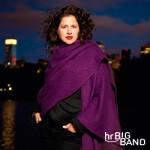 hr-Bigband - Anat Cohen Quartet
