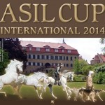 Asil Cup International 2014