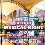 Best of Musical Night