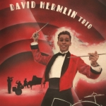 We Got Rhythm - David Hermlin Trio