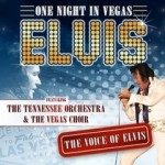Elvis - One Night In Vegas