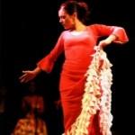 FIN DE FIESTA - 10. Flamencosommer - die Jubiläumsausgabe im kurfürstlichen Schloß zu Mainz
