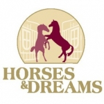 Bild: Horses & Dreams 2020