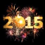 Neujahrskonzert - Grimma