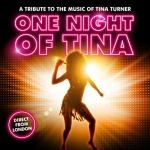 Bild: One Night of Tina