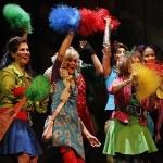 Petticoat - Rock 'n' Roll und Schlagerrevue