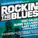 ROCKIN' THE BLUES FESTIVAL 2018 - VIP Ticket incl. Guitar clinic