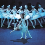 Bild: Russisches Nationalballett - Schwanensee