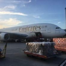 A380 Airport Tour