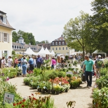 Bild: Gartenfestivals Evergreen