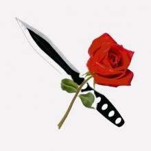 Das Mädchen und der Messerwerfer in Essen, 27.04.2018 - Tickets -