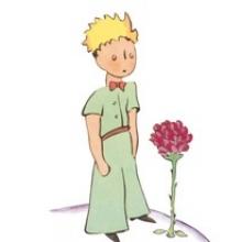Der Kleine Prinz By Franziska Nagel On Prezi