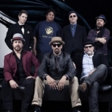 Bild: Fat Freddy