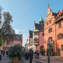 Guided City Tour Freiburg (English) - Open City Walk