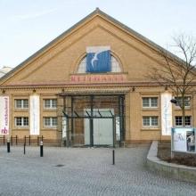 Krähe und Bär - Hans Otto Theater