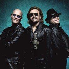 Night Fever The Very Best Of The Bee Gees Tickets Karten Online