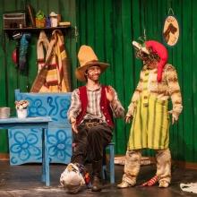 Pettersson kriegt Weihnachtsbesuch - Theater Concept