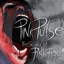 Pink Pulse - The Sound of Pink Floyd
