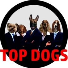 Top Dogs in Mannheim, 18.02.2018 - Tickets -