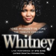 Bild: One Moment In Time Tribute Concert - WHITNEY - Performed by Nya King