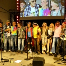 Woodstock Party - Aschaffenburger All Stars