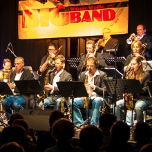 Wüste Welle Big Band
